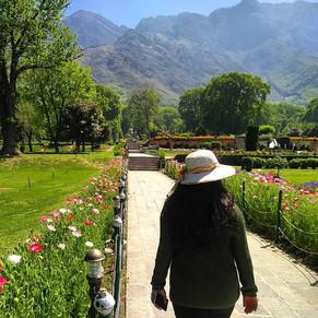 Kashmir - A rendezvous in Paradise