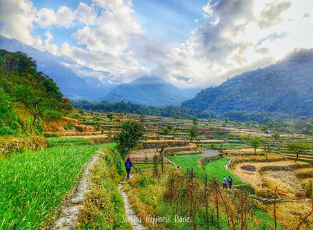 What we can learn from the Self-Sustainable Villages of Nagaland