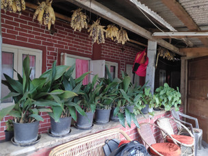 Front porch of our Homestay