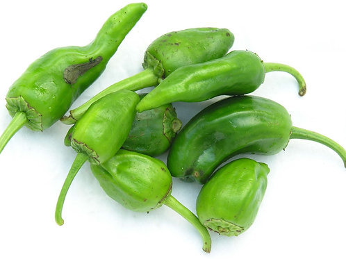 FRESH SPANISH PADRON PEPPERS 250GR