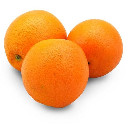Orange Large 5 Pack