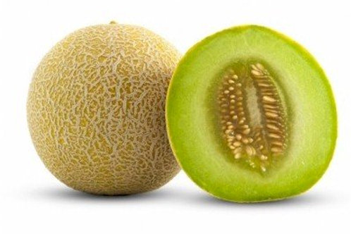 Melon Galia Each