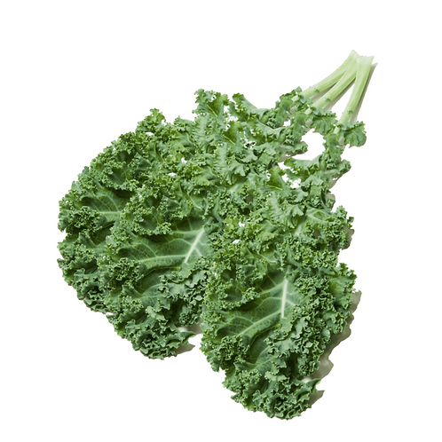 CURLY KALE 250GR PACK