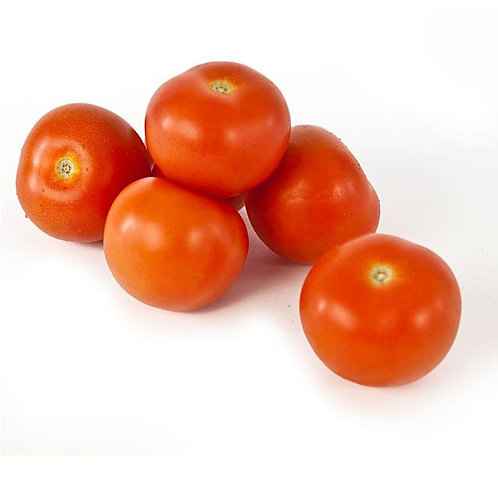 PACK OF 6 TOMATOES