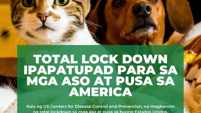Total Lock Down Ipatutupad Para sa mga Aso at Pusa sa Amerika