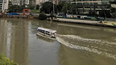 Operasyon ng Pasig River Ferry Service, Nananatili Paring Suspendido