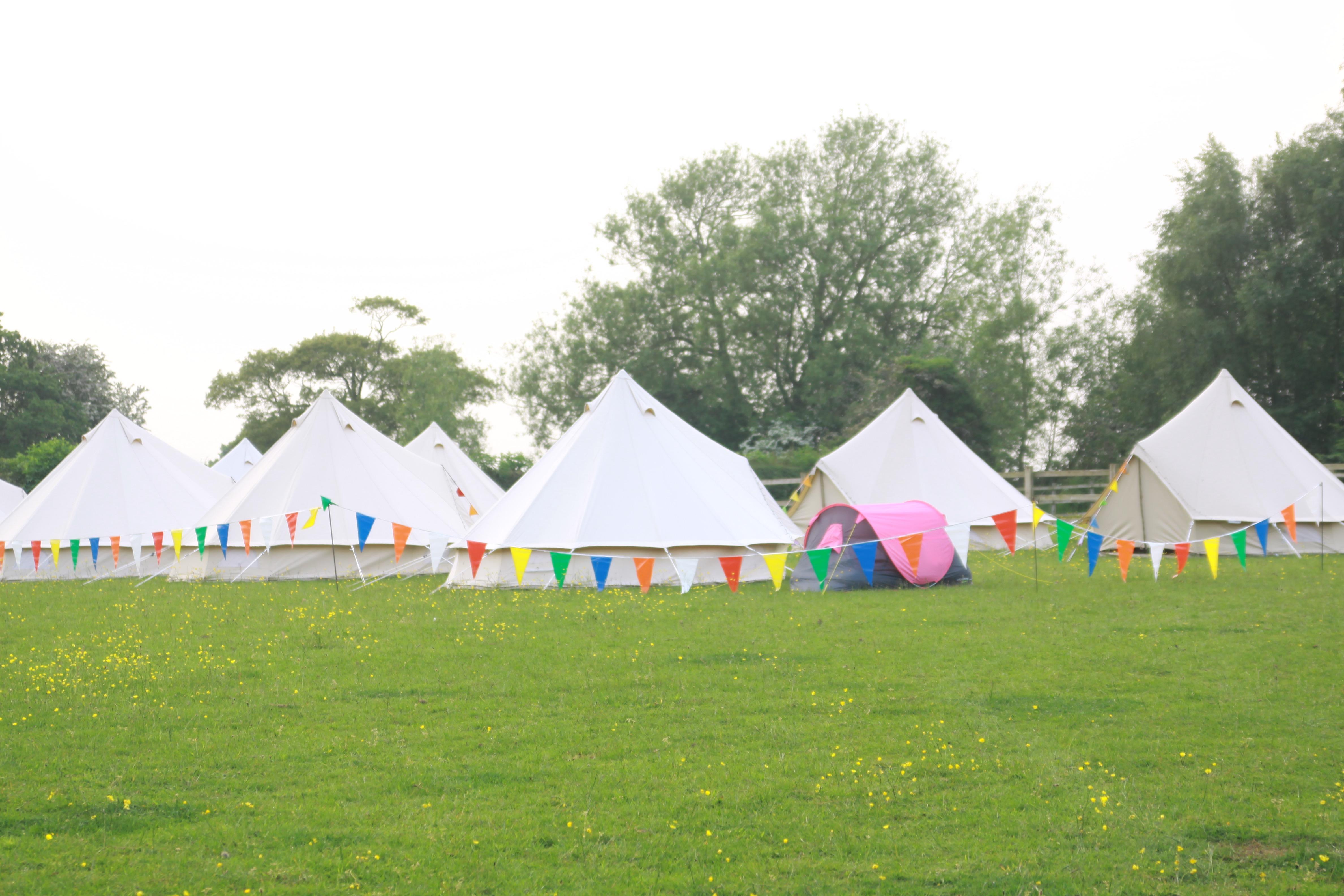 Festival Tippie Hire