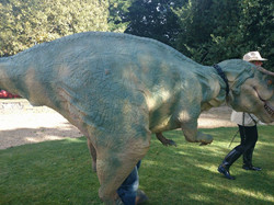 Dinosaur Walkabout Acts for Wedding