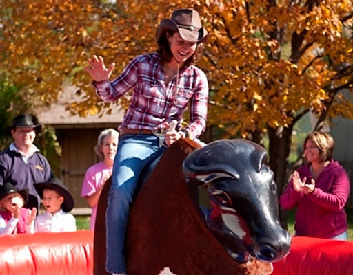 Rodeo Bull and other themed activities available for hire for fun days, parties and summer events.