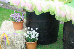Decoration Solutions for Festival