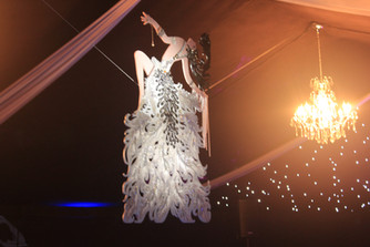 Aerial Show Hire for Luxury Private Events London UK