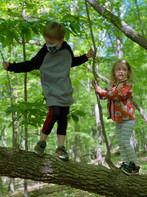 climbing on tree.jpg