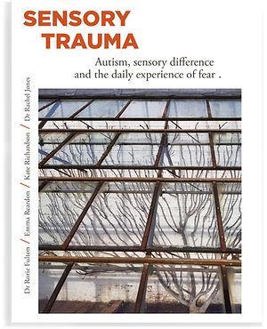 Sensory Trauma book cover shadow.jpg