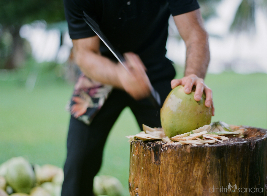 Coconut catering