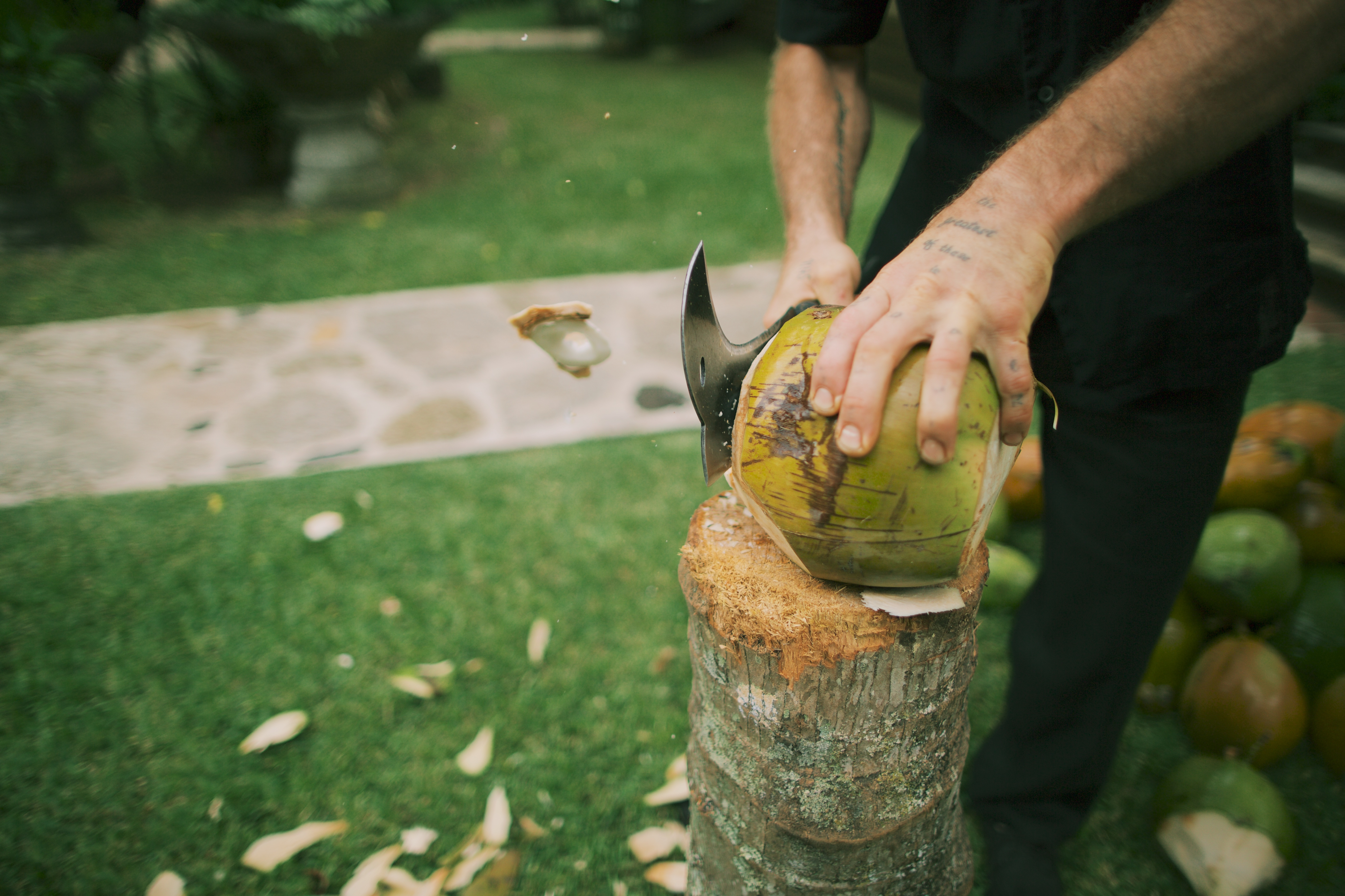 Chopped coconuts