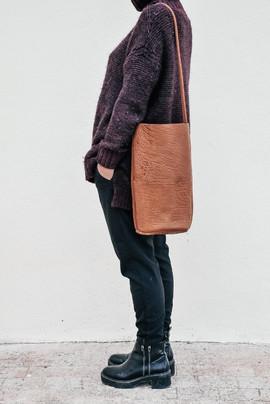 Huemul-porter-brown.jpg