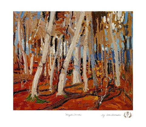 Maple Woods