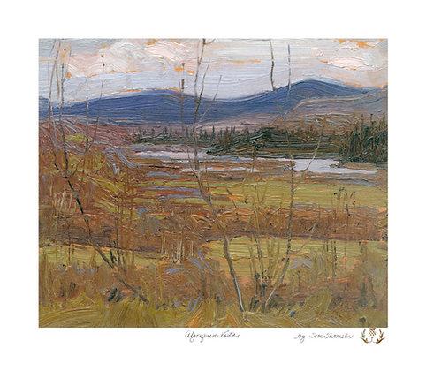 Algonquin Vista