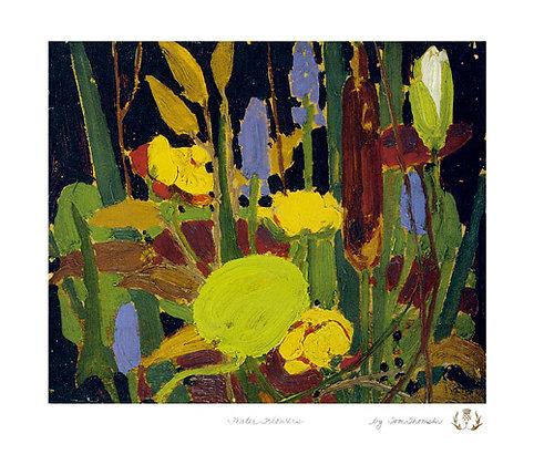 Waterflowers