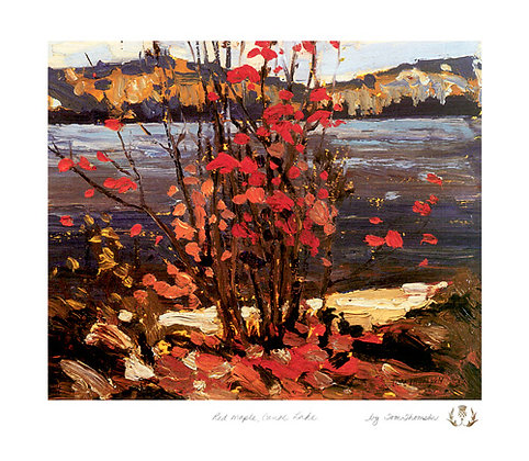 Red Maple, Canoe Lake