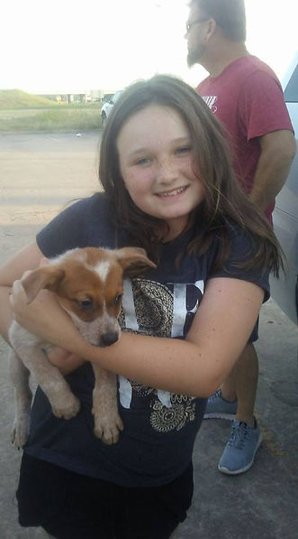 child and heeler puppy