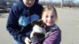 Child holding her new Cowboy Corgi puppy