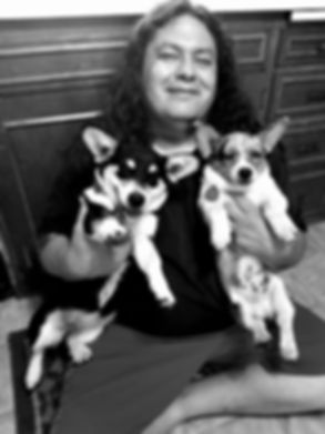 lady with 2 coboy corgi puppies
