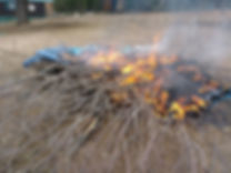 brush on fire