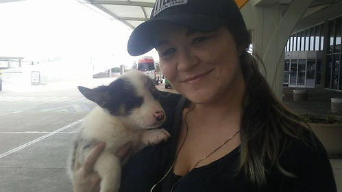 young lady holding her new Cowboy Corgi puppy