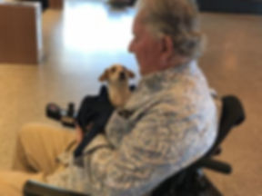 Man in wheelchair holding his new Cowboy Corgi puppy