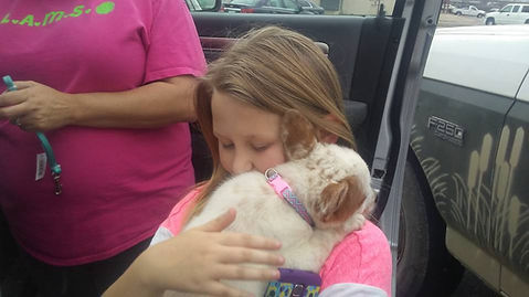little girl hugging her new Cowboy Corgi puppy