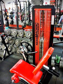 musculacion aparatos gimnasio Steel and blood 03