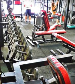 musculacion aparatos gimnasio Steel and blood 04