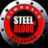 2logo steel belgrano.png