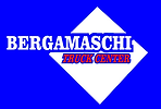 BERGAMASCHI T.CENTER - recorte.png