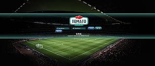 [먹튀사이트] 토마토 토토검증 먹튀검증은 먹튀안전놀이터