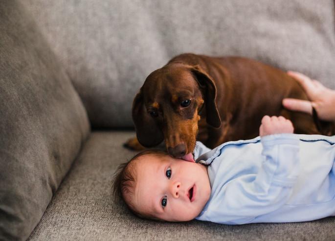 Sneak Peek | Baby Charlie