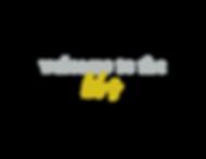 blog logo.png