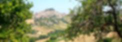 Marche Region.jpg