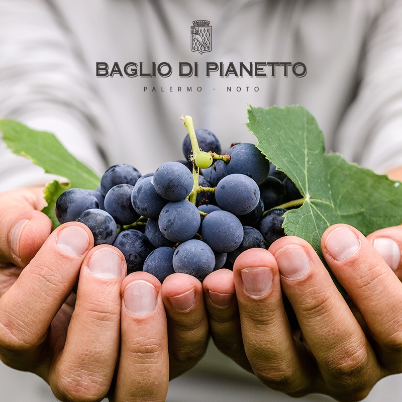 Baglio di Pianetto 3.jpg
