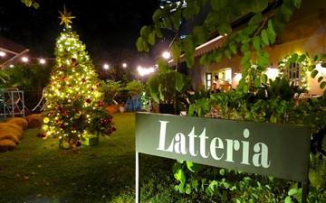 Christmas _Latteria.jpg