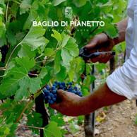 Baglio di Pianetto 4.jpg