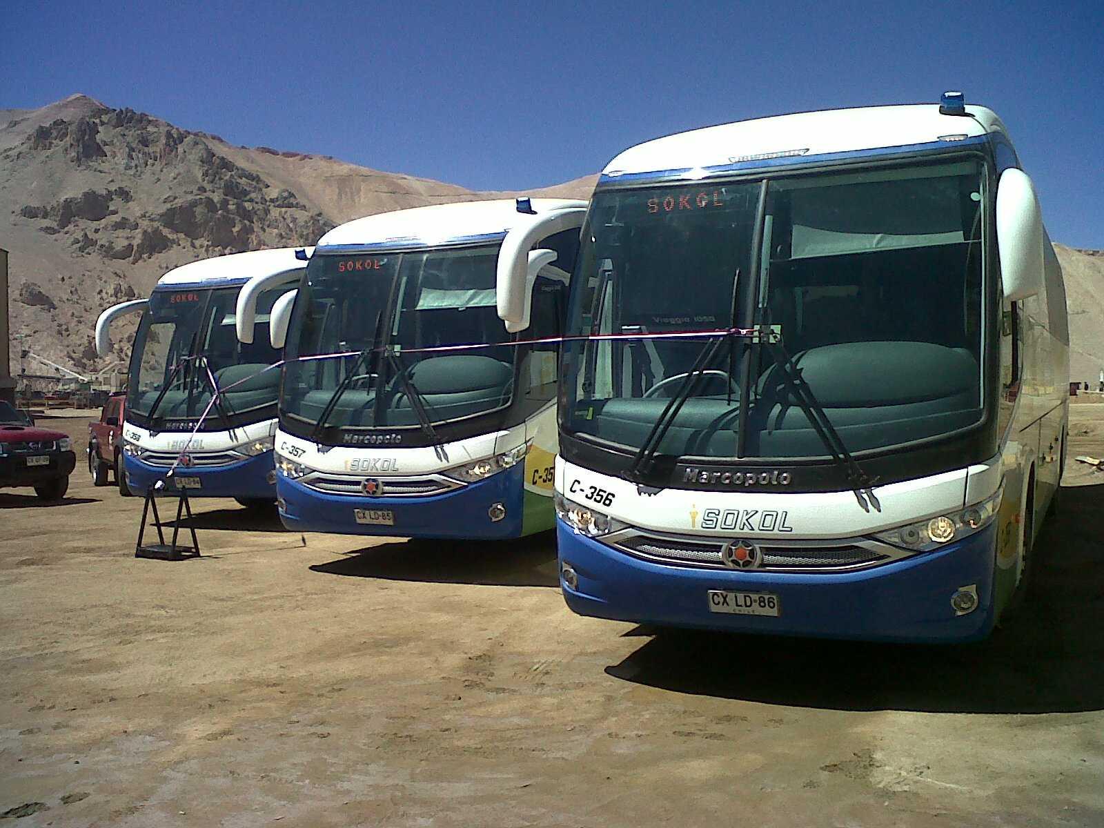 Viaggios G7 Mantos de Oro 2011