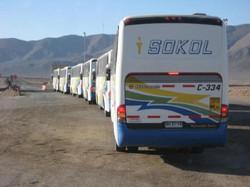 BusSokol VIaggio 1050
