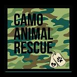 Camo logo (7).png