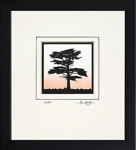 Cedar in Black Frame