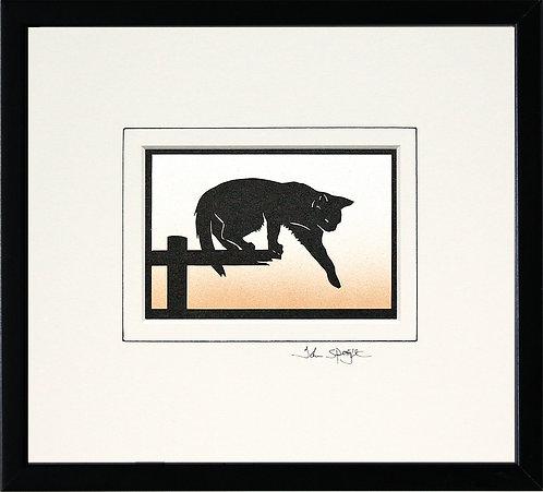 Cat Stepping in Black Frame