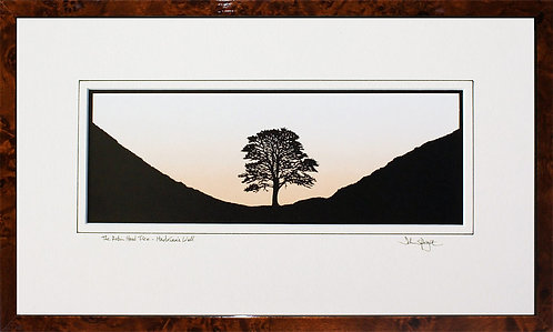 Robin Hood Tree, Sycamore Gap - Large Version in Walnut Veneer Frame