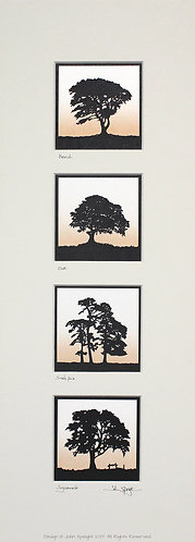 Beech, Oak, Scots Pine & Sycamore Quadruple