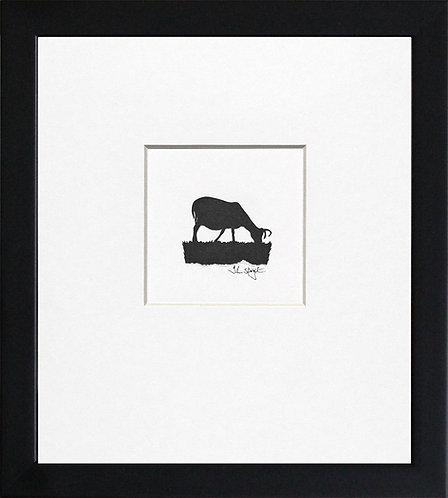 Hebridean Sheep - Grazing in Black Frame